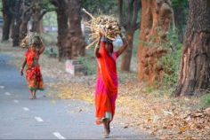 Voices from Mobile Vaani: Discussing the gender pay gap in Indian informal economies